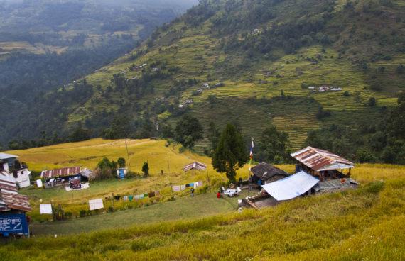 trekking-poon-hill