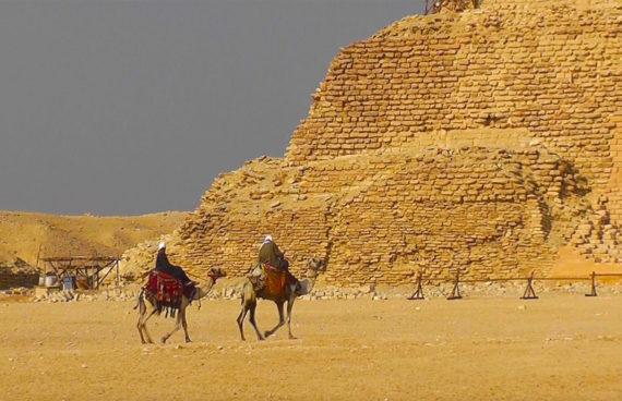 CAMELLOS - EGIPTO